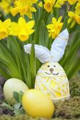 Cute floral decoration with Easter egg — Foto de Stock