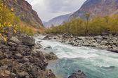 River Valley Chulyshman — Stock Photo