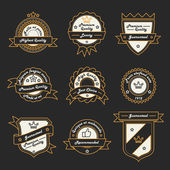 Set of Monochrome Hipster Vintage Label, Logo and Badge Templates. Trendy Line Design. Vector Illustration. — Stock Vector