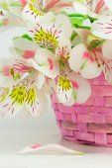Bouquet of alstroemeria  in wicker basket — Stock Photo