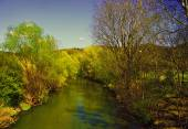 The spring landscape — Stock Photo