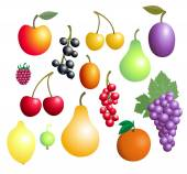 Fruits And Berries Collection — Stock Vector