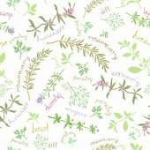 Seamless Pattern With Aromatic Herbs And Cute Titles — Stock Vector