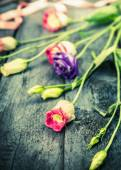 Pink and blue garden flowers on old wooden table, toning — Stock Photo
