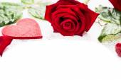 Heart and red roses on white background, valentines day — Stock Photo