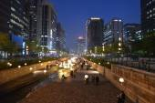 People walking along the Cheonggyecheon-ro canal at night time — Photo