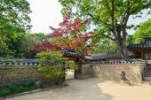 Old traditional architecture on the territory of Changdeokgung Palace, Seoul, Korea — Stock Photo
