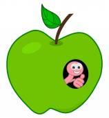 Maggot in a green apple — Stock Vector