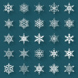 Flat snowflakes. Vector icons set. — Stock Vector #58879549