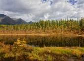 El principio del otoño — Foto de Stock
