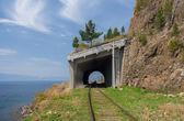 Summer on the Circum-Baikal railroad — Stock Photo