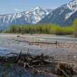 Spring high water on the river Snow — Stock Photo #62207469
