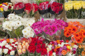 Aooerted flowers of a market stall — Stock Photo