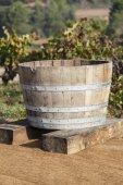 Wine Making — Stock Photo