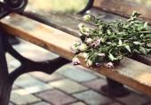 Dry bouquet — Stock Photo