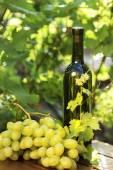 White wine bottle with grape — Stock Photo