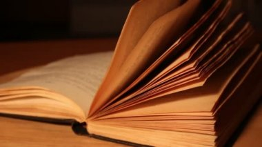Libro viejo — Vídeo de stock
