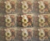 Květina na starý papír — Stock fotografie