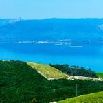 Croatian coastline along the Adriatic Sea with olive plantations — Stock Photo #68786701