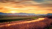 Sunset and blurred clouds illuminate the fertile fields — Stock Photo