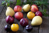 Colorful summer fruits on wooden table — Stock Photo