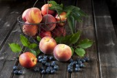 Basket with  nectarines and peaches — Stock Photo