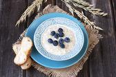 Bowl of oats porridge — Stock Photo