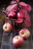 Fresh harvest of apples — Stock Photo
