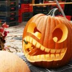 Small pumpkins — Stock Photo #61241781