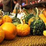Small pumpkins — Stock Photo #61241791