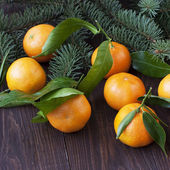 Citrus fruits on wooden background — Stock Photo