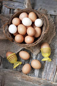 Chicken colorful eggs — Stock Photo