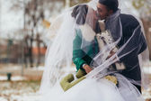 Beautiful wedding in autumn park — Stock Photo