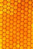 Fundo do favo de mel — Fotografia Stock