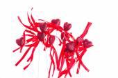 Decorazioni con nastri e fiocchi isolati su sfondo bianco a forma di cuore rosso San Valentino. — Foto Stock