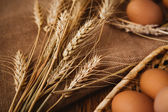 Fresh brown eggs and wheat on linen background — Stock Photo