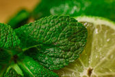 Lime and mint on wooden background — Stock Photo