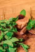 Muffin spillt med choklad och mynta — Stockfoto