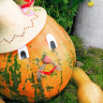 Large pumpkin originally executed as an amusing figurine. — Stock Photo #55783911