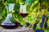 Decanter and glass of wine — Stock Photo