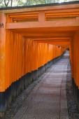Shinto traditional path — 图库照片