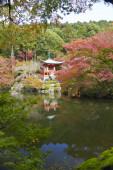 Red Japanese garden — Stock Photo
