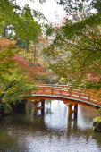 Red bridge on an autumn garden — Foto Stock