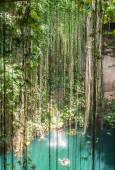 Cenote in Mexiko — Stockfoto