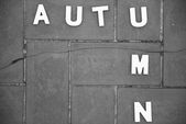 Letters forming the word autumn — Stock Photo