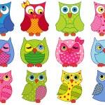 Set of twelve colourful cartoon owls — Stock Vector #67829251