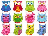 Set of twelve colourful cartoon owls  — Stock Vector