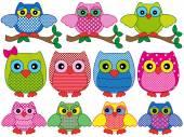 Set of eleven ornamental cartoon owls — Stock Vector