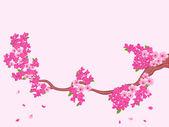 淡粉色樱花盛开分行 — 图库矢量图片