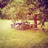 Wooden table in summer garden — Foto de Stock